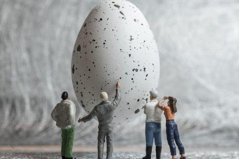 W poszukiwaniu smoczego jaja